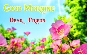 friends good morning images 16