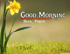 friends good morning images 17