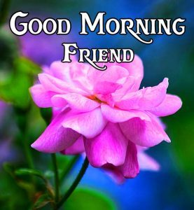 friends good morning images 18