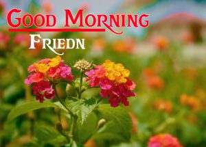 friends good morning images 2