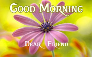 friends good morning images 4