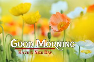 friends good morning images 7