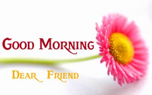 friends good morning images 8
