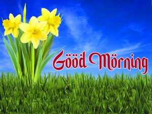 friends good morning images 9