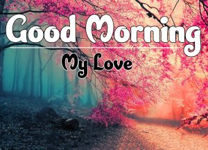 Good Morning Wallpaper HD 3