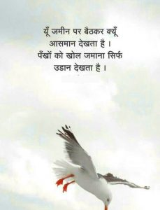 Hindi Shayari Wallpaper 42