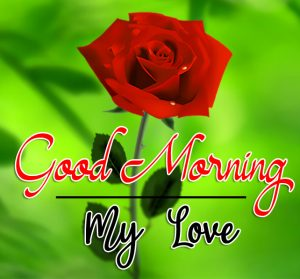 Love Couple Good Morning Images 13