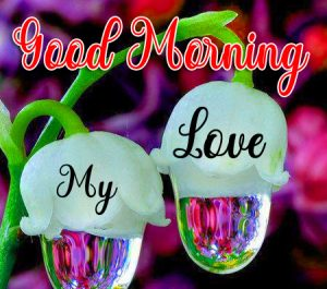 Love Couple Good Morning Images 16