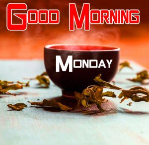 Lover Monday Good Mornign Wishes Images 19