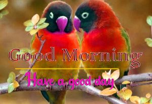 3D Good Morning Images 10