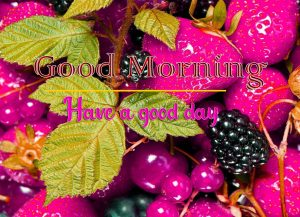 3D Good Morning Images 77