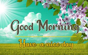 3D Good Morning Images 85