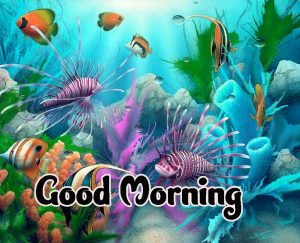 Good Morning Images HD 1080p Download 29