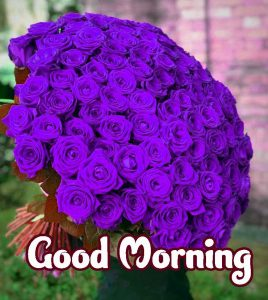 Good Morning Images HD 1080p Download 72