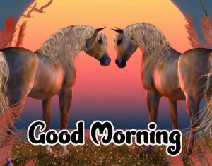 Good Morning Images HD 1080p Download 77
