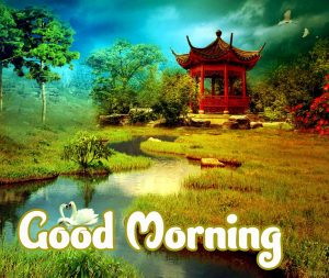 Good Morning Images HD 1080p Download 78