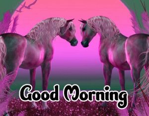Good Morning Images HD 1080p Download 81