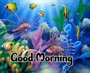 Good Morning Images HD 1080p Download 88