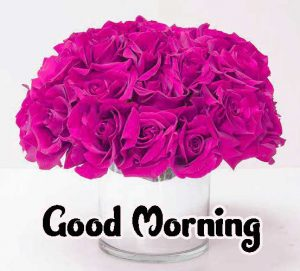 Good Morning Images HD 1080p Download 97