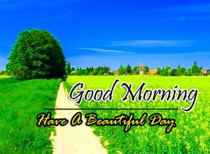 Good Morning Free Pictures