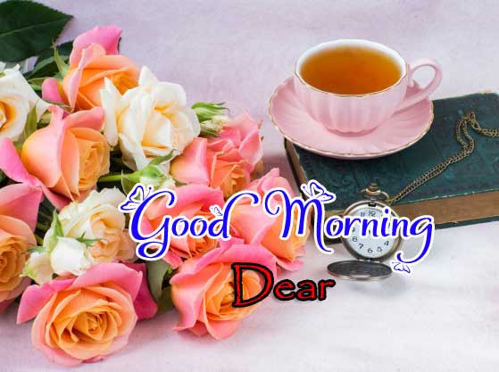 142+ Good Morning Images Wallpaper Pics Photo Pictures For Girlfriend