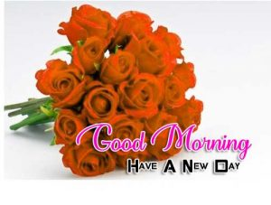 Latest Good Morning Photo Pictures