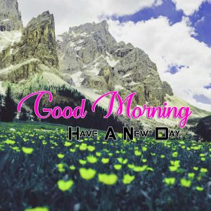Latest Good Morning Pictures Free