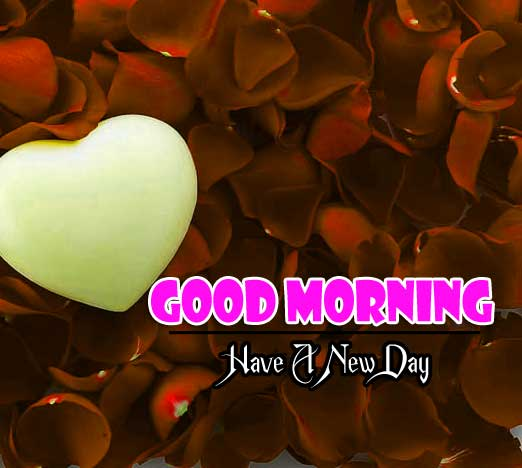 122+ Good Morning Images Wallpaper Photo With sunrise HD Download