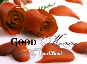 New Good Morning Hd Free Images